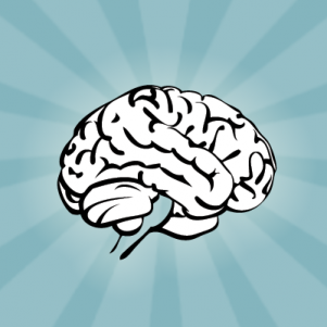 Why Your Brain is so Amazing